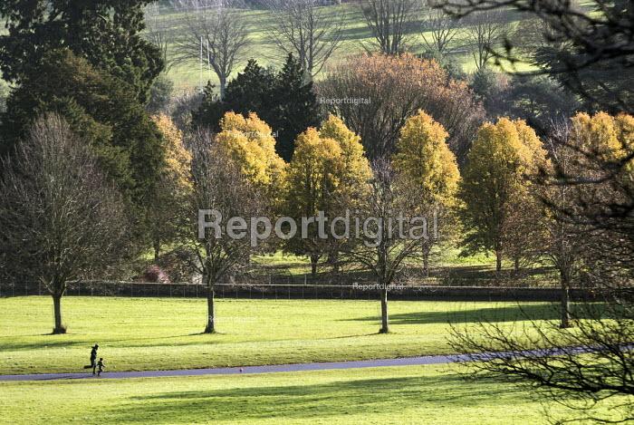 Walkers, Ashton Court Estate, Bristol. - Paul Box - 2014-01-02