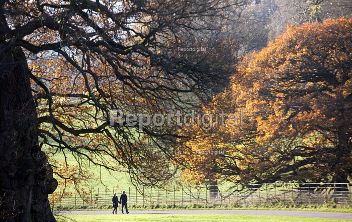 Walkers, Ashton Court Estate, Bristol. - Paul Box - 2014-12-03