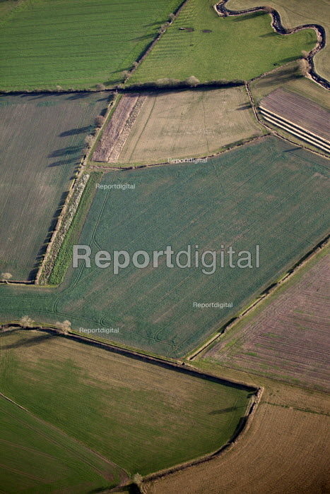 Farmland in Oxfordshire. - Paul Box - 2012-01-13