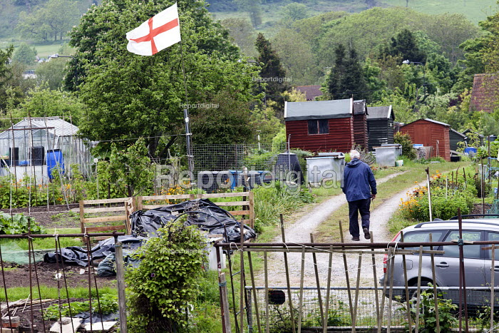 A St Georges flag in a Bristol allotment - Paul Box - 2012-05-20