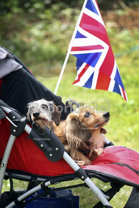 Celebrations of the Queen's Diamond Jubilee, Llanmartin, Wales. - Paul Box - 2012-06-03