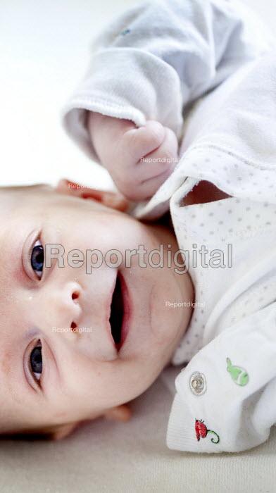 A 6 week old baby boy. Bristol - Paul Box - 2012-11-08