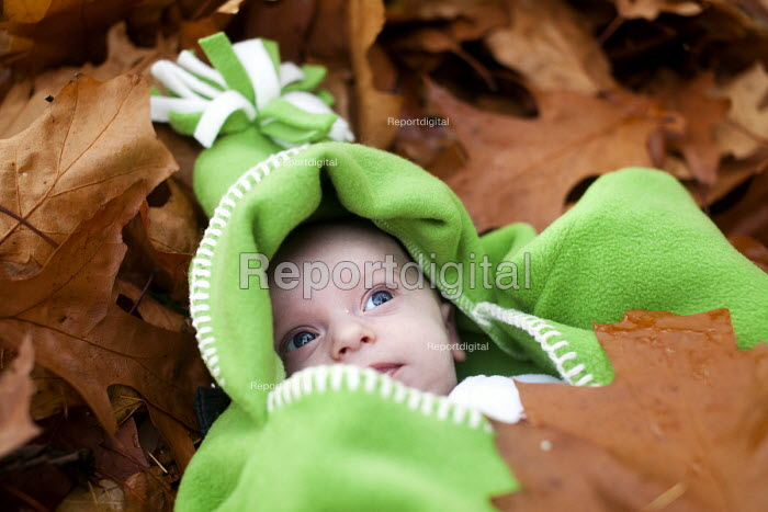A small boy lies in the Autumn leaves, Westonbirt Arboretum, Forestry Commission, Wiltshire. - Paul Box - 2012-11-08