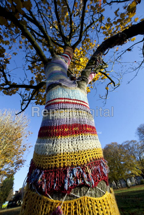 Yarn bombing: A knitted cosie or tree warmer, St Andrews Park Bristol. Intended to make the park feel safer, cared for and so reduce the fear of crime. - Paul Box - 2012-11-11