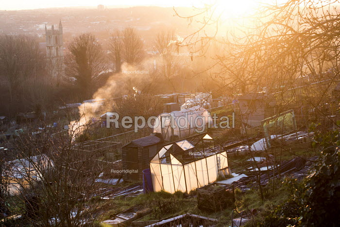 Sunrise, Ashley Hill Allotments, Ashley Down, Bristol. European Green Capital. - Paul Box - 2015-01-19