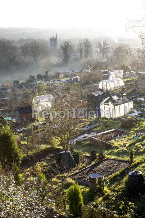 Sunrise, Ashley Hill Allotments, Ashley Down, Bristol. European Green Capital. - Paul Box - 2015-01-19