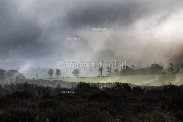 The Quantock Hills, Somerset. - Paul Box - 2014-11-18