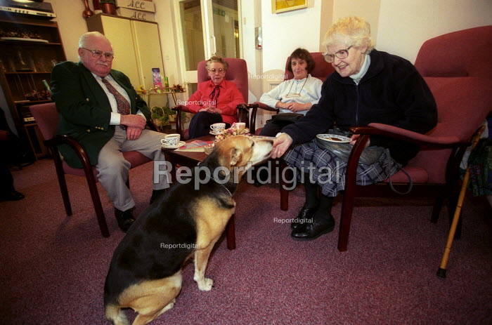 A group of oaps sitting in their retirement home, Bristol with a dog. Pets provided happiness and lower stress levels for the elderly. - Paul Box - 2003-12-01