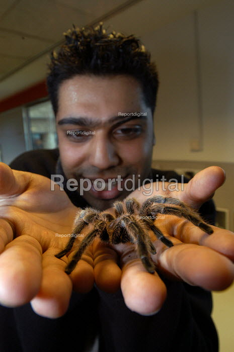 A man with a tarantula spider on his hands. - Paul Box - 2003-11-01