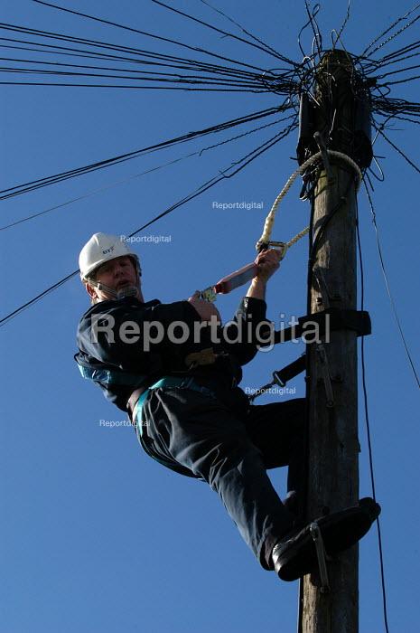 A British Telecom engineer works on telegraph pole - Paul Box - 2003-03-20