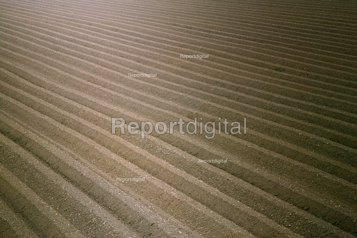 A ploughed field in Herefordshire - Paul Box - 2004-07-02