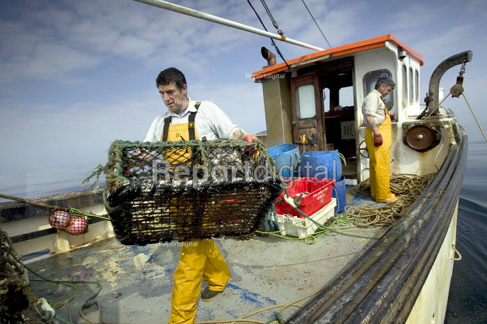 Local fishermen catch lobsters and crabs in the Camel estuary, the catch is exported live to Spain. Padstow. - Paul Box - 2004-08-02