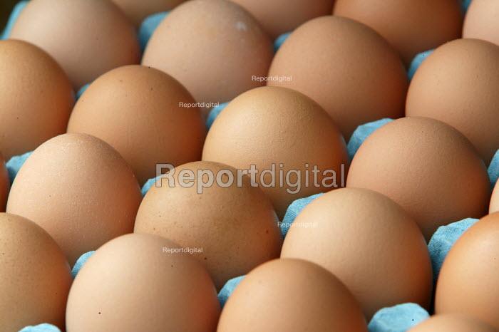 A box of eggs. - Paul Box - 2004-08-02