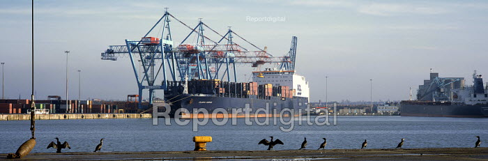 Container ship Atlantic Compass ACL Port of Liverpool. - Paul McMullin - 2003-03-16