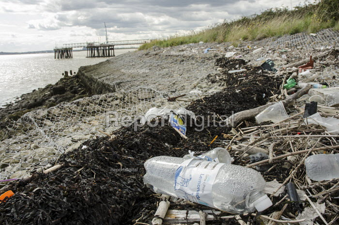 Plastic bottles, seaweed and other debris washed up on the Kent shore of the Thames estuary near Gravesend. - Philip Wolmuth - 2014-08-23