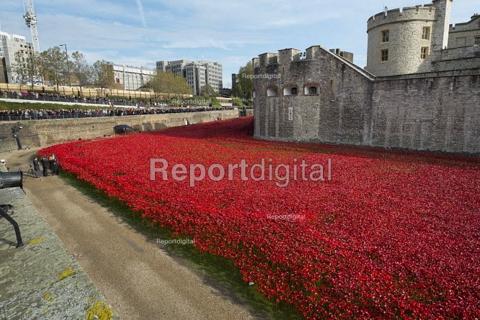 Art installation of red ceramic poppies by Paul Cummins commemorating British and colonial soldiers who died in WW1. Crowds mark Armistice Day at the Tower of London 100 years after the start of the First World War. - Philip Wolmuth - 2014-11-11