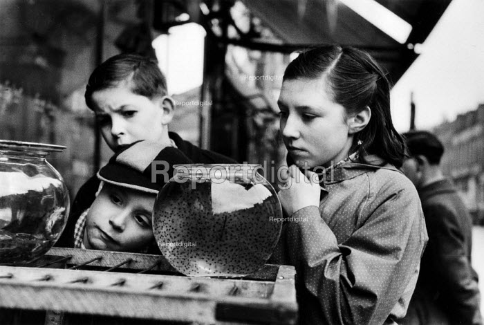 Children looking at a frog spawn in a bowl on a pet stall in a London street market in 1952. .... - Elizabeth Chat - 1952-07-11