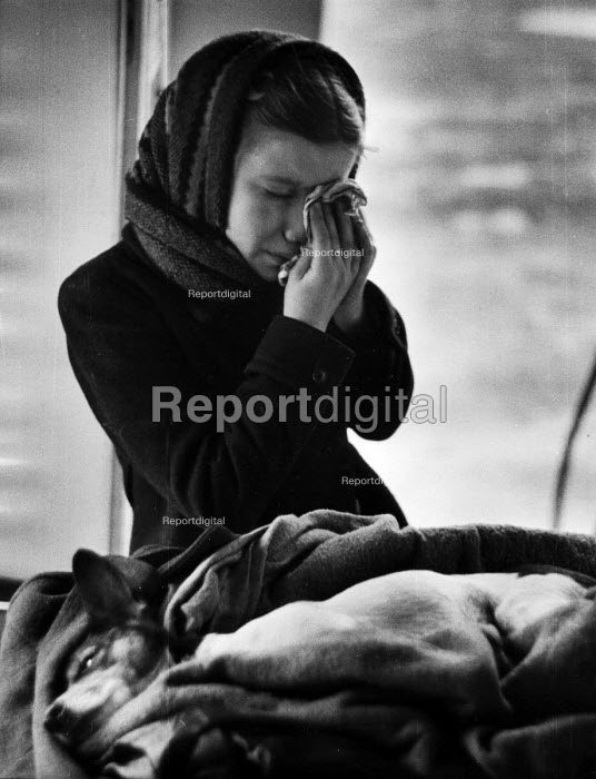 Young girl in tears having taken her ill dog in for treatment at a Mobile Dispensary For Sick Animals of The Poor, London in 1952. .... - Elizabeth Chat - 1952-07-11