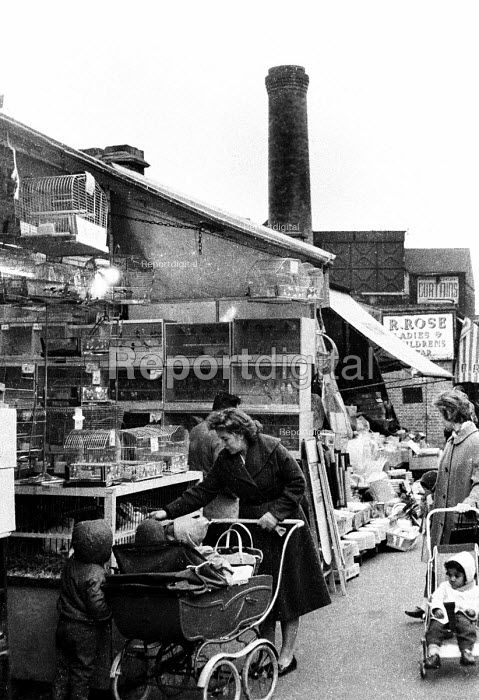 Mother and her children looking at rabbits in cages at a pet stall in a London street market in the early 1960's. .... - Romano Cagnoni - 1962-07-11