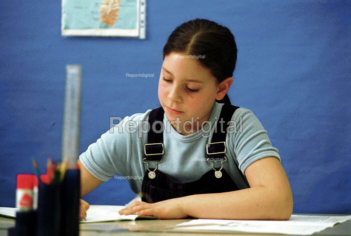 Pupil in Year 5 class working alone at desk - Stefano Cagnoni, S9902S35.JPG