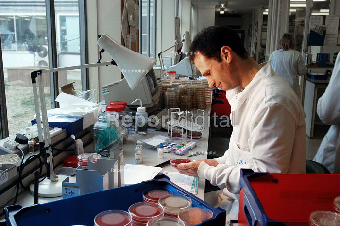 NHS staff examining blood and tissue samples in the Pathology Laboratory of a hospital - Stefano Cagnoni - 2005-01-13