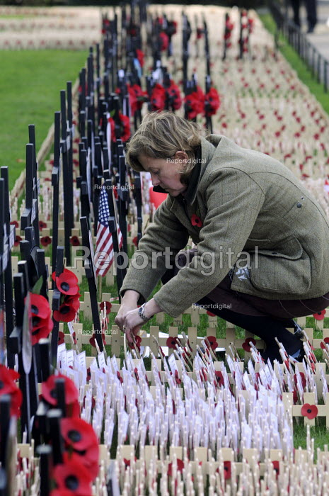 Woman placing a poppy and a cross to commemorate the war dead in the field of remembrance beside Westminster Abbey in London. - Stefano Cagnoni - 2012-11-07