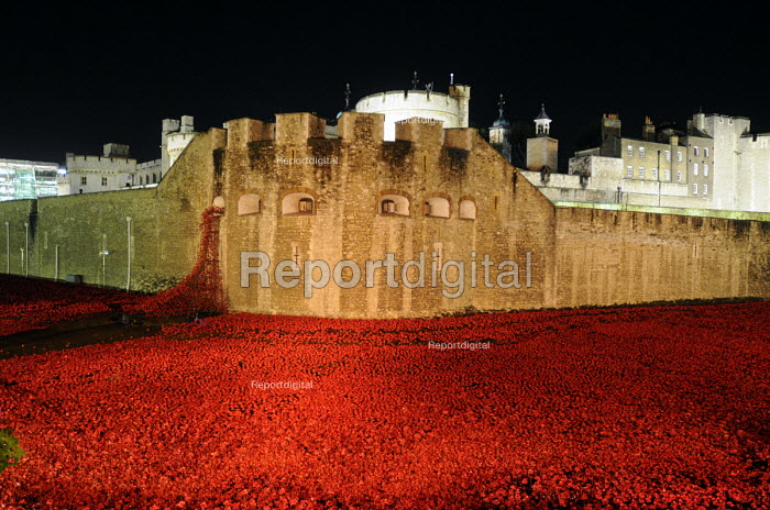 Art installation, floodlit at night, by Paul Cummins in the moat at the Tower of London to commemorate one hundred years since the start of the First World War. 888,246 ceramic poppies, each representing a life lost of a British or colonial soldier who died fighting in the Great War. - Stefano Cagnoni - 2014-11-12