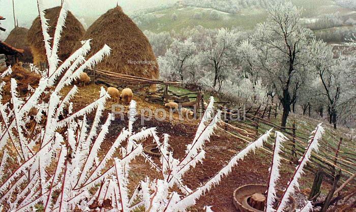 View of rural Serbia. Dreneovo, Serbia. 1997 - Andrija Ilic - 1997-07-01