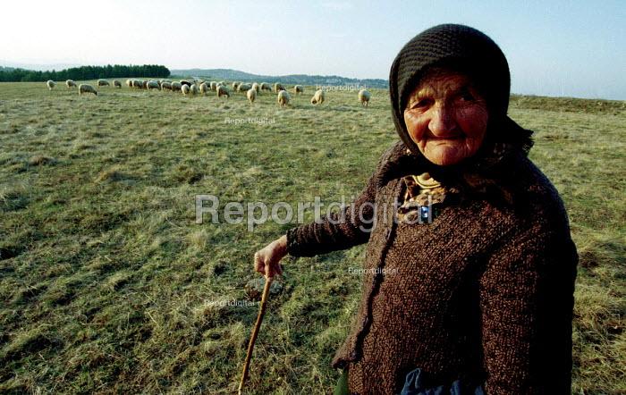 An elderly shepherd woman with her sheep. Mount Zlatibor, Serbia 2004 - Andrija Ilic - 2004-05-21