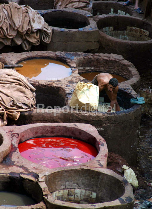 Preparation and dying of leather in the traditional manner in the city of Fes. Morocco 2004 - Boris Heger - 2004-09-01