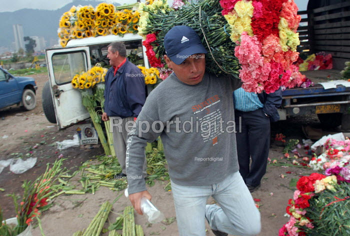 Flower market in Bogota. Colombia is renowned for its huge flower production. Bogota, Colombia 2004 - Boris Heger - 2004-09-01