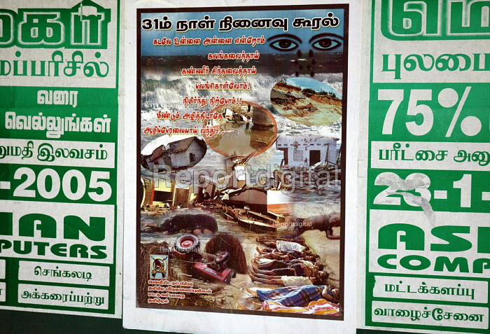 A poster produced by the Tamil Tigers - Ltt - commemorating those lost in the Tsunami, Tirukkovil District on the east coast of Sri Lanka. 2005 - Howard Davies - 2005-03-05