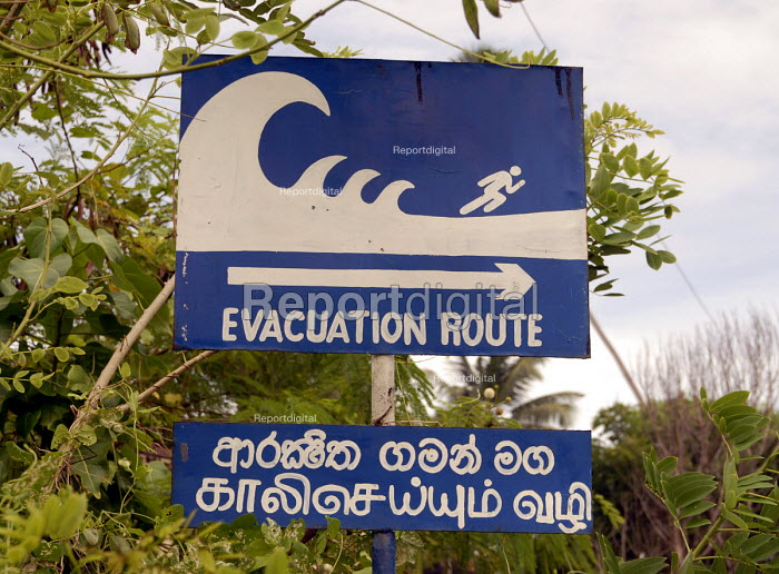 Signs indicating evacuation routes on the south of Sri Lanka. The signs have been put up after the area was devasted by the Tsunami. Sri Lanka 2006 - Howard Davies - 2006-09-09