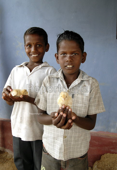Two children with chicks outside a house rebuilt after the Tsunami on the south coast of Sri Lanka 2007 - Howard Davies - 2007-10-19