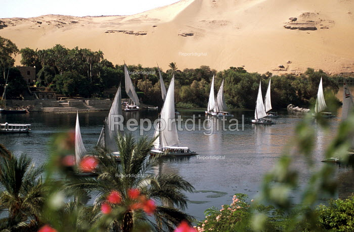 Feluccas sailing on the River Nile in Aswan, Egypt 2005 - Howard Davies - 2005-10-14