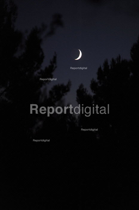 Waxing moon above the pine trees at the Buddhist Retreat Centre Guhyaloka, Spain - Timm Sonnenschein - 2009-08-23
