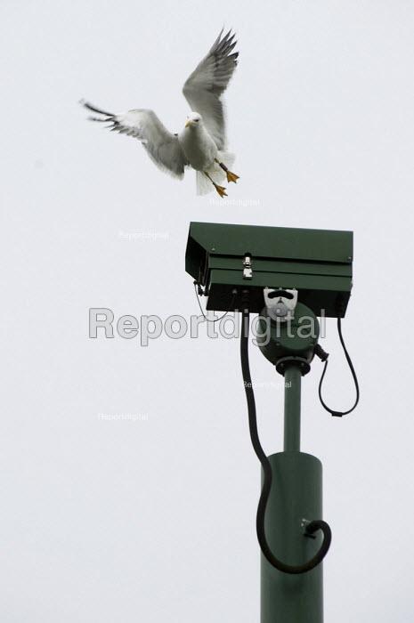 Surveillance camera, Balsall Heath, Birmingham - Timm Sonnenschein - 2010-06-18