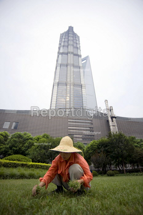 A worker pulling out dry grass outside the Jin Mao Tower, Shanghai, China - Timm Sonnenschein - 2010-08-15
