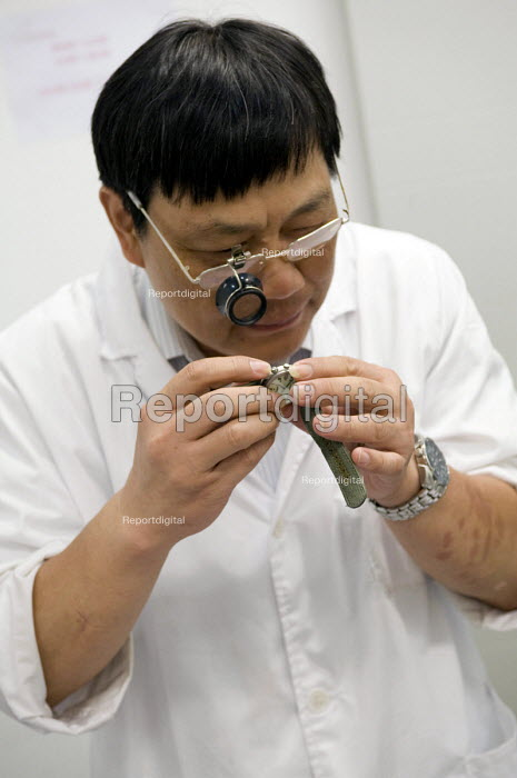 A watchmaker repairing a watch at the Seiko headquarters in Shanghai - Timm Sonnenschein - 2010-08-11