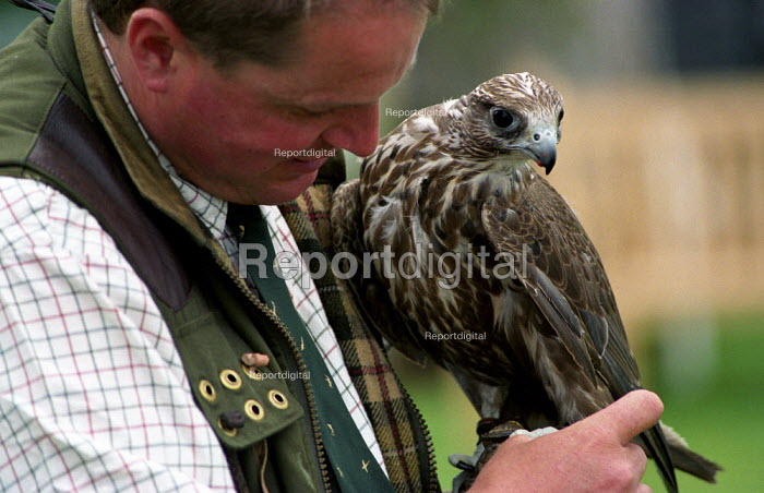 Border Union agricultural show, Kelso, Scottish Borders. Falconry display - Paul Mattsson - 2002-07-26