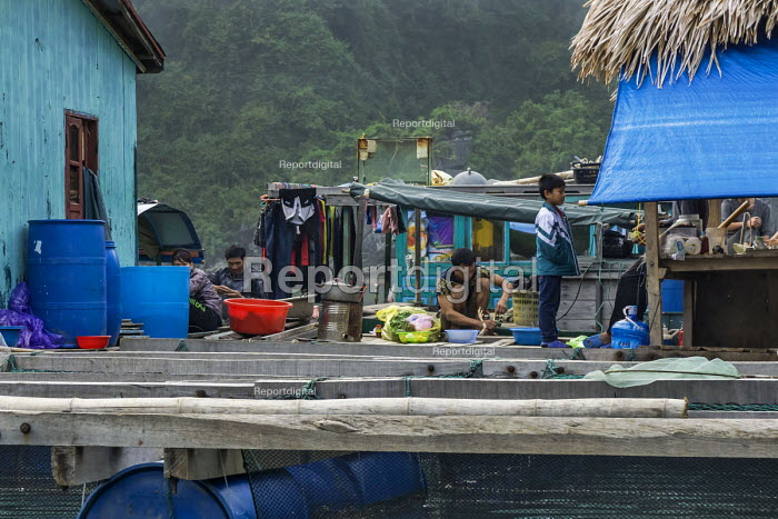 Floating fishing village, Ha Long Bay, North Vietnam - David Bacon - 2015-12-09