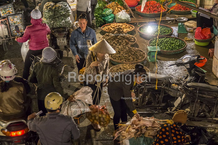 Hanoi, Vietnam, Long Bien produce market early in the morning. Produce sellers come and buy from farmers bringing fruit and vegetables into the city. - David Bacon - 2015-12-09
