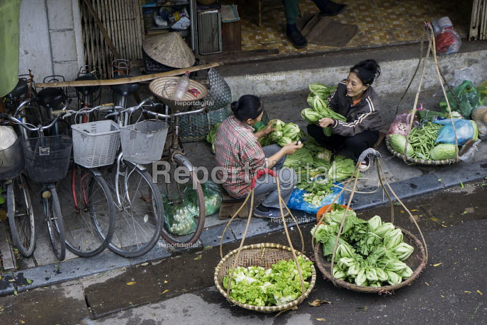 Hanoi, Vietnam, Long Bien produce market early in the morning, selling fruit and vegetables. - David Bacon - 2015-12-09