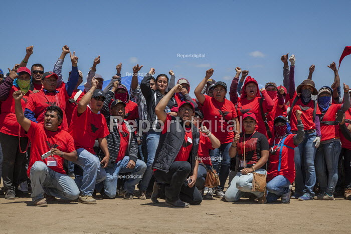 California USA, Farmworkers celebrating the result of the vote for a union, the UFW, Workers at the Klein Management Company pick blueberries. After the company cut their wages, workers stopped work, and then voted for the union in an election supervised by the Agricultural Labor Relations Board (ALRB). Most workers are indigenous Mixtec and Zapotec migrants from Oaxaca, Mexico - David Bacon - 2016-05-21