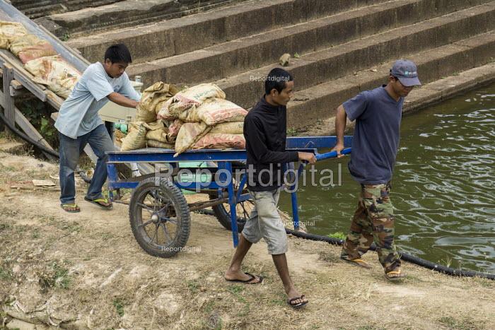 Cambodia, Workers repairing dikes at the lagoon, Angkor Wat - David Bacon - 2015-12-21