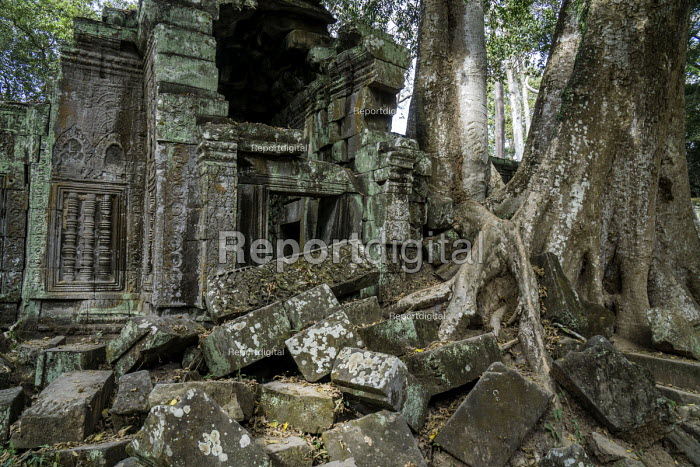 Cambodia, Tree roots take over the ruins in Ta Prohm Temple where the movie Indiana Jones was filmed.Copyright David Bacon - David Bacon - 2015-12-21