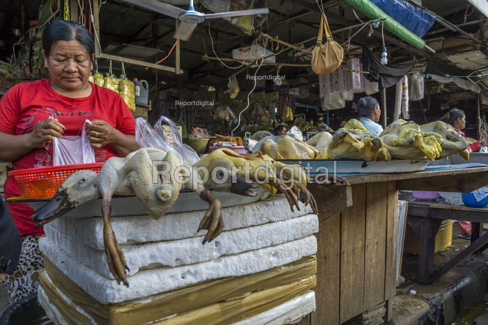 Battambang, Cambodia, Phsar Nath Market, selling geese at a street stall - David Bacon - 2015-12-24