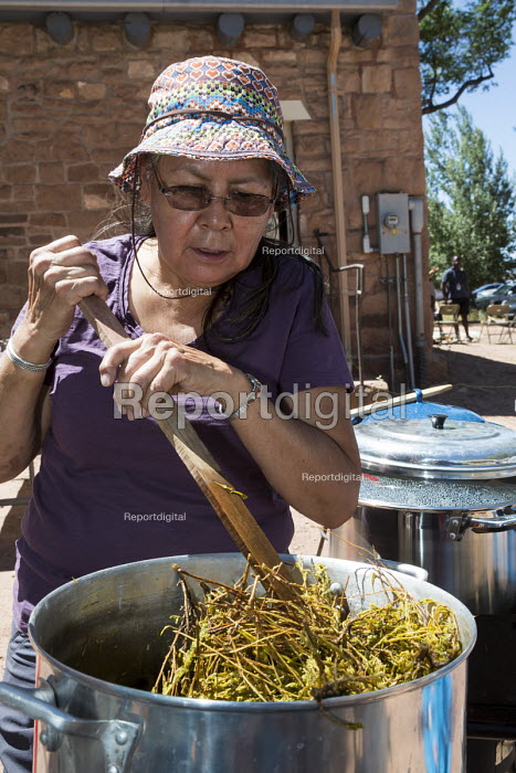 Ganado, Arizona, Navajo Nation, using natural materials, such as sagebrush, wild carrots, lichens, and nuts, dye wool. Wool and Weaving Workshop, Hubbell Trading Post National Historic Site - Jim West - 2016-07-10