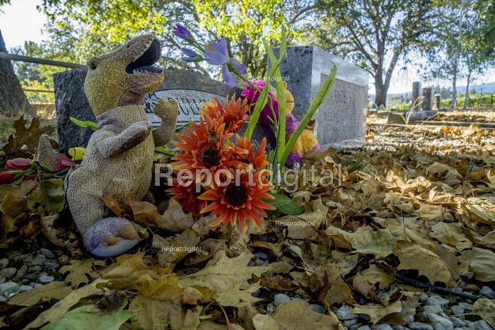 California, USA, Graves, Forestville Cemetery - David Bacon - 2016-09-17