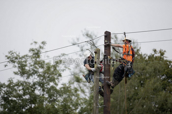 Engineers up a Telegraph pole, Wales - Jess Hurd - 2016-09-23